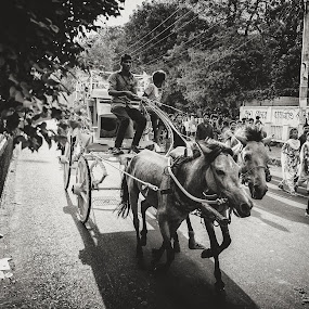 The Road Rider by Rahat Amin - City,  Street & Park  Street Scenes ( walking, black and white, horse, street, candid, cart, wide, people, city, riding, movement, bnw, nikon, d5100 )