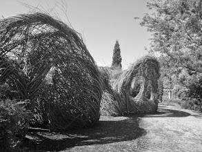 Photo: Giant wicker maze at Wegerzyn Gardens in Dayton, Ohio.
