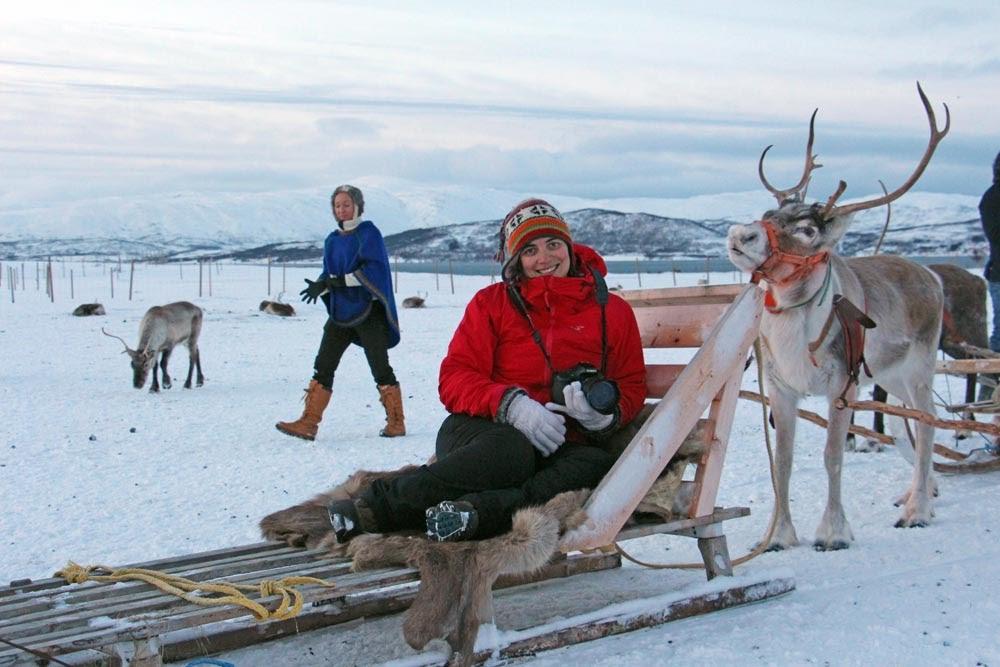DICAS de viagem para visitar TROMSO (e ver as AURORAS BOREAIS) | Noruega