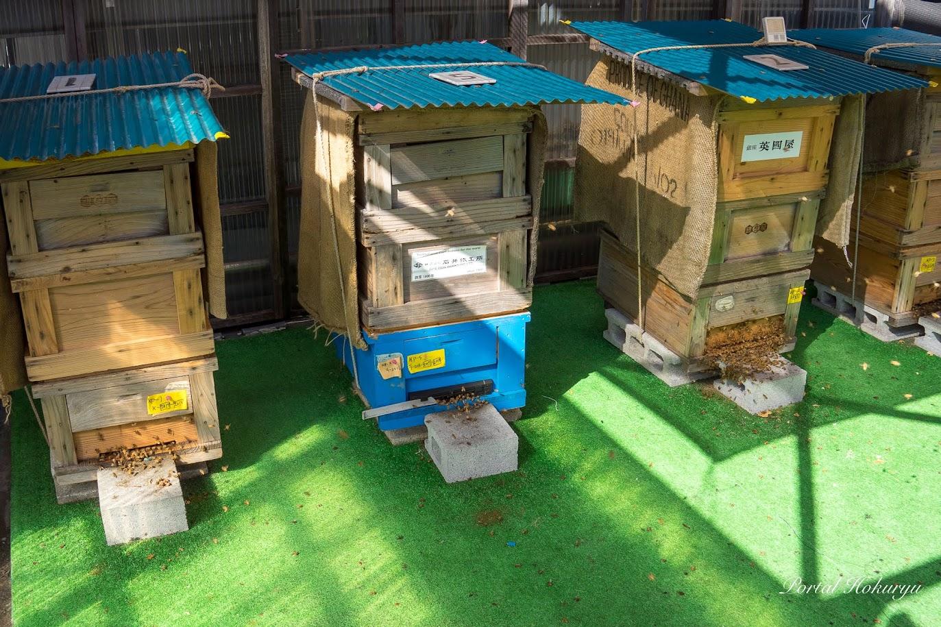 紙パルプ会館ビルの屋上にある養蜂場