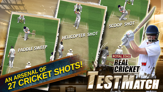 Real Cricket™ Test Match App Download For Android and iPhone 4