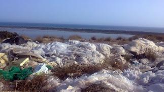 La provincia  suma más de 30.000 hectáreas cubiertas de plástico.