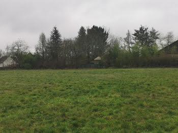 terrain à Villemurlin (45)