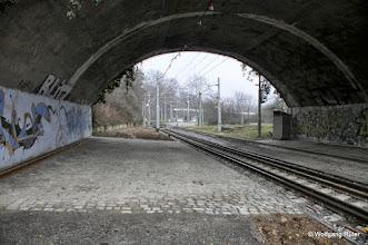 Photo: U-14-Gleise unter der Fern-/S-Bahn-Brücke über den Neckar