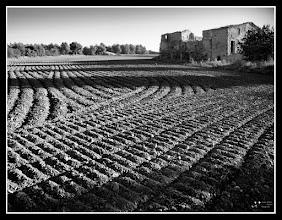 Photo: plow land #plusphotoextract curated by +Jarek Klimek