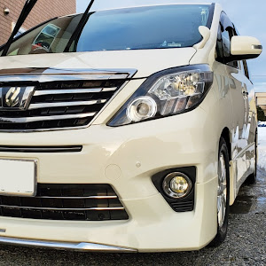 アルファード ANH25W 親車 240S タイプゴールド 4WDのカスタム事例画像 青森県のタイプゴールドさんの2020年01月18日16:12の投稿