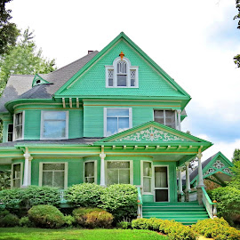 Painted House by Nancy Young - Buildings & Architecture Homes ( painted, house, colorful, architecture, home )