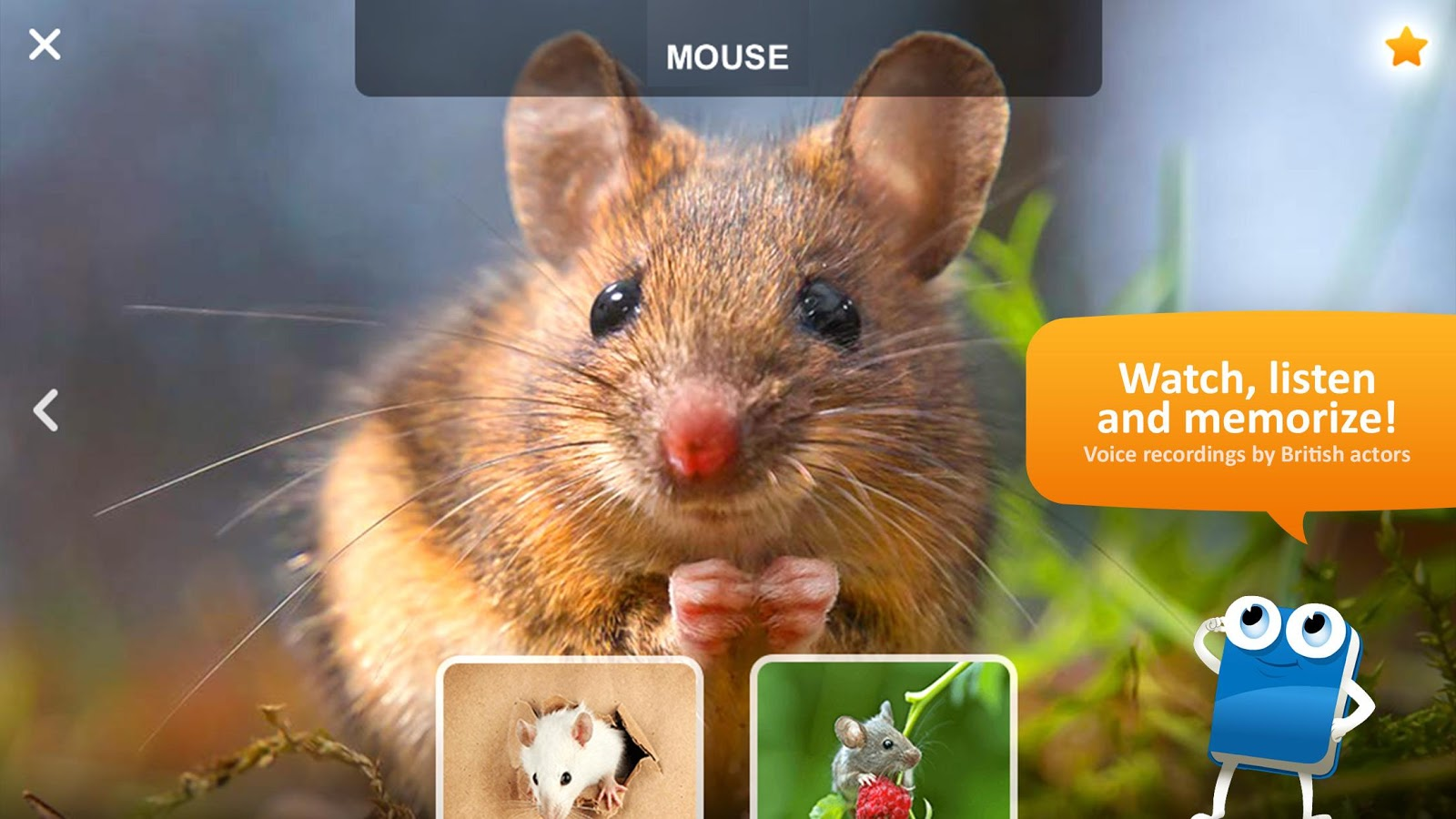 Vocaboo ABC: English for kids- screenshot