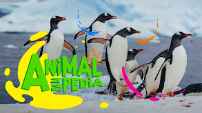 Animal Fanpedia thumbnail