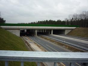 Photo: ecoduct