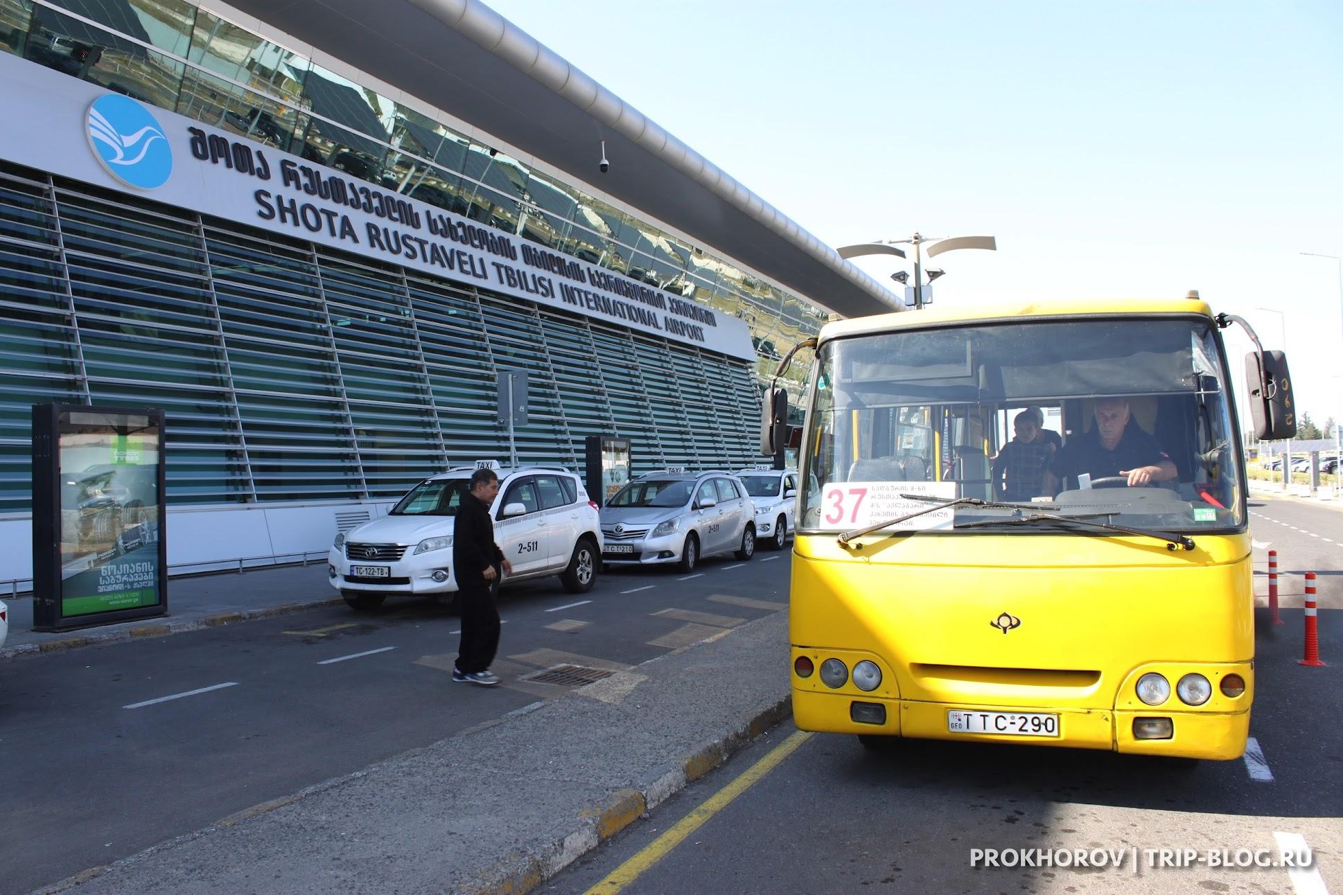 Автобус 37 в аэропорту Тбилиси