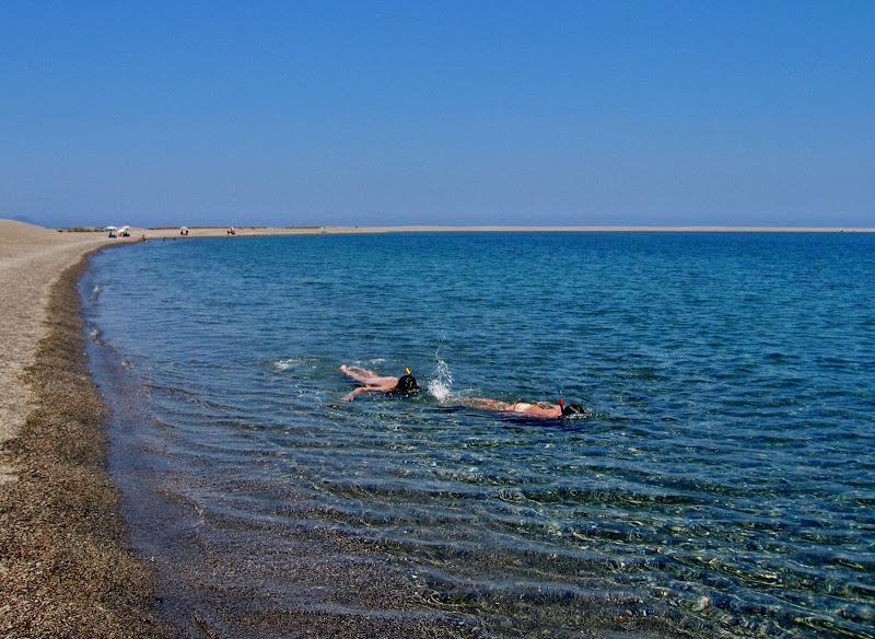 Snorkeling  di Giorgio Lucca