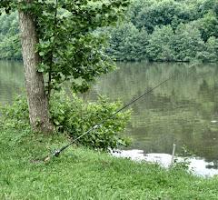 Photo: ...hier badet einer seit Stunden einen ca. 15cm langen toten Fisch, wie mein Gegenüber am Place Jeanne D´Arc in Metz seinen Teebeutel, ich dachte gleich lutscht er ihn aus