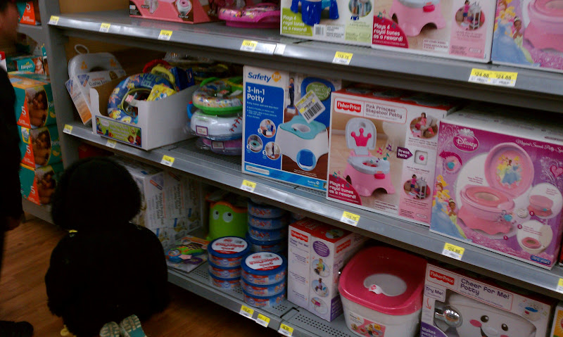 Photo: We were looking at all of the potty chairs, but we couldn't decide on one to buy yet.