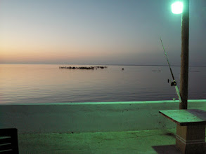 Photo: Early morning from the deck of the Andros Island Bonefish Club