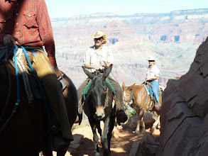 Photo: Une ancienne tradition, la promenade en mulet