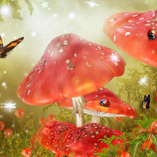 蘑菇动态壁纸