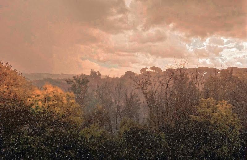 RAIN IN AUTUMN. di matteo_maurizio_mauro