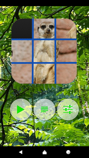 Animal Picture Puzzles