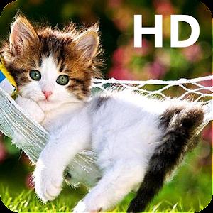 Cute Cat Wallpaper Hd Mobile App Store Sdk Rankings And Ad Data