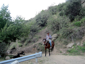 Photo: Day 3 - Huaso (Chilean cowboy) in the Andes