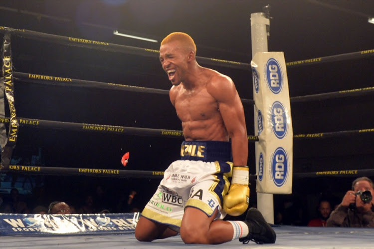 Azinga Fuzile celebrates after knocking down Tshifhiwa Munyai during the Four go to War boxing bout at Emperors Palace.