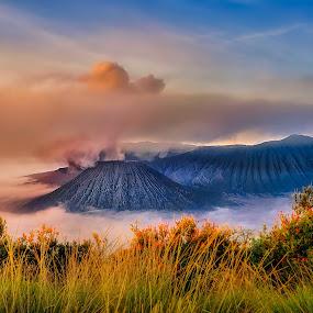 Mount Bromo by Tien Sang Kok - Landscapes Mountains & Hills ( volcano, nature, sunrise, landscape, eruption )