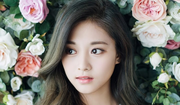 Tzuyu Is Praised By Korean Media After Appearing At The 2019