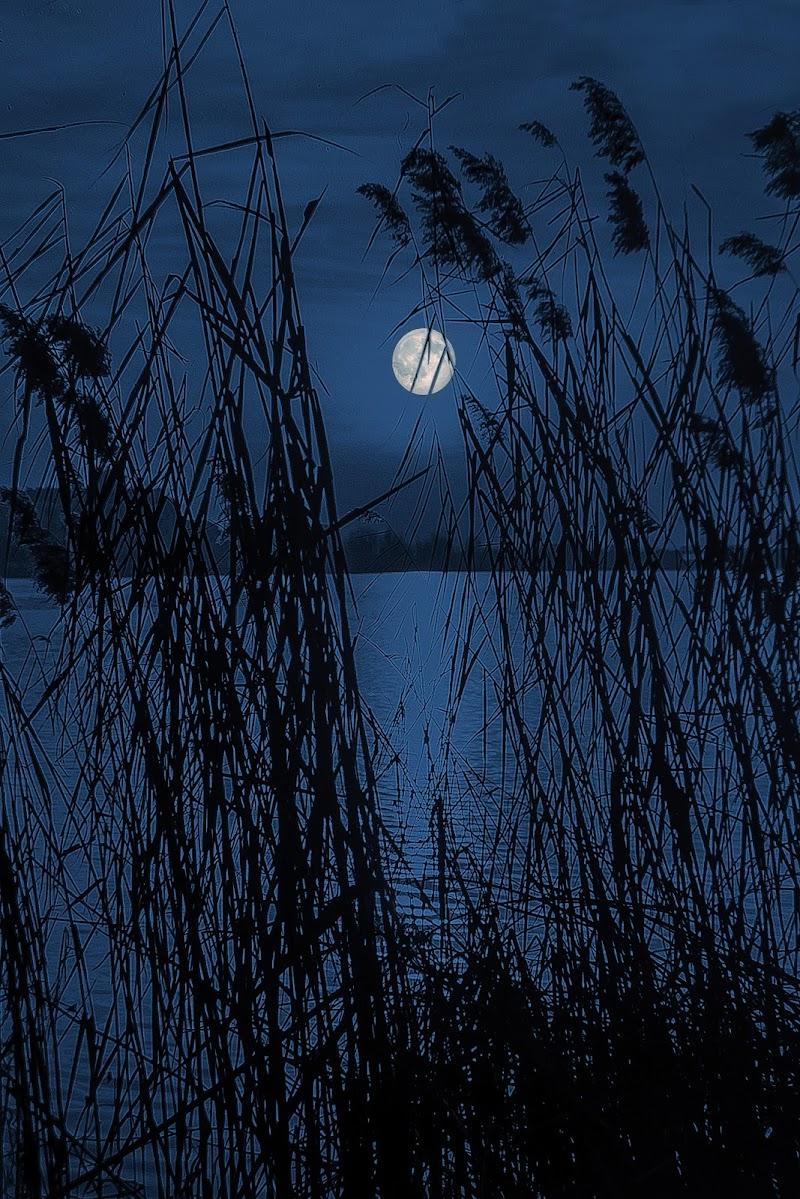 Chiarore di luna sul lago superiore  di Scaletta