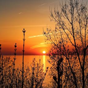 Sunset at St. Joseph Overlook, May 7, 2018 by Jennifer Smusz - Landscapes Sunsets & Sunrises ( #lakemichigan, #sunset, #puremichigan, #overlook, #dunes, #michigan, #beauty, #lake, #southwestmichigan )