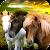 🐴❤️🐴 Horse Family: Fantasy Survival Simulator file APK for Gaming PC/PS3/PS4 Smart TV