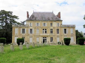 château à Nevers (58)