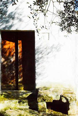 Aria campagnola di Alessio Proto