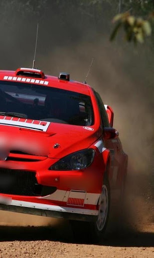 Wallpapers Peugeot 307 WRC
