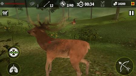 Real Archery King - Bow Arrow 1.5 screenshot 1555804