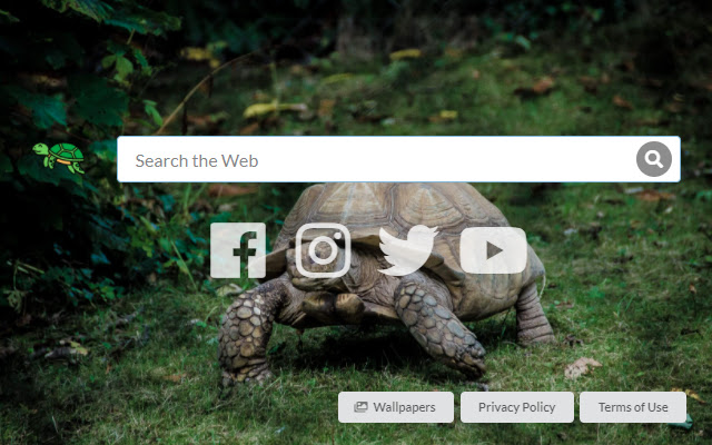 Save Turtle Tab