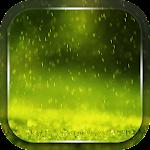 Rain Live Wallpaper apk