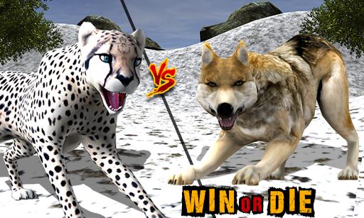 野生雪豹生存辛