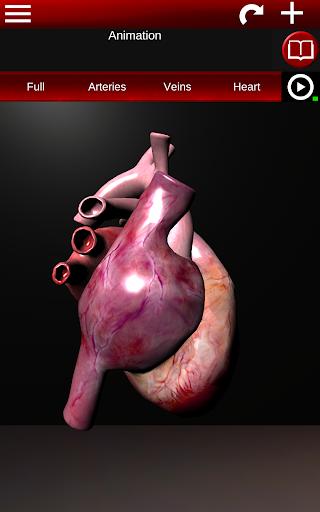 Circulatory System in 3D (Anatomy) 1.58 screenshots 10