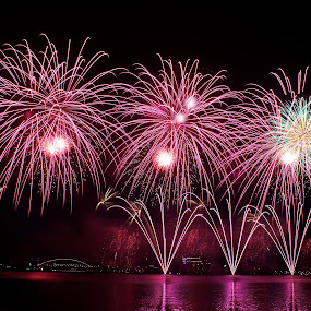 PIFC2013-Dubai(1) by Mohd Norsabree Sailan - Abstract Fire & Fireworks ( sabreephotograpict, putrajaya, beautiful, fireworks, special, pifc2013, colours )