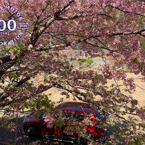 CX-5 KE2FW H25年式 XDのカスタム事例画像 AMC-007さんの2020年03月15日20:46の投稿
