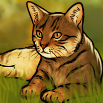 How To Draw Cats - screenshot thumbnail 02