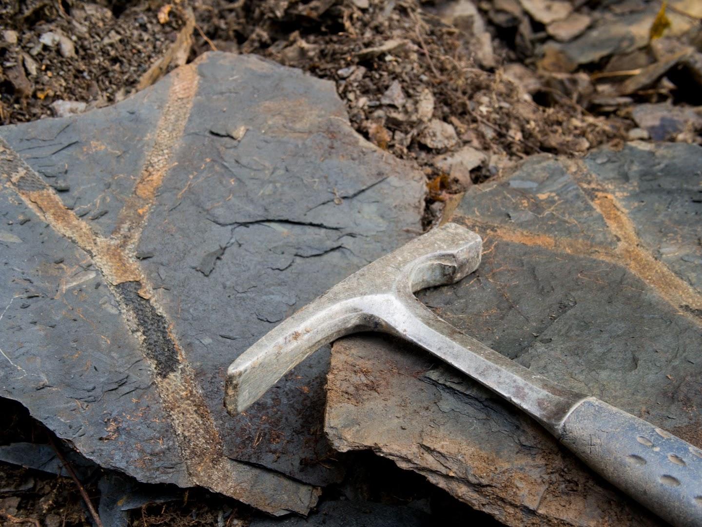 Flore Carbonifère des Alpes Françaises part 1 - Page 4 NXvQ45Bg6X_Cjyf8sLoASzeowjAbeOI6lzrR6wPPAtFK58ie_-ro6wRgR2dAmxJtQgJCOxSzBQ5toQ=w1920-h1080-no