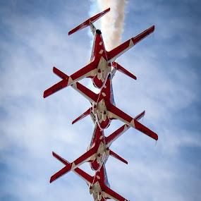 RCAF Snowbirds by Scott Thiel - Transportation Airplanes ( ct-114, airplane, rcaf, snowbirds, tutor, caf, canadair,  )