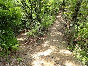 トンネル下山口分岐(左へ)