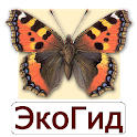 EcoGuide: Russian Butterflies icon