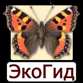 EcoGuide: Russian Butterflies