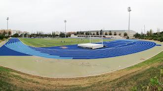 Campo Anexo.
