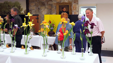 Photo: The Judges begin a walk-through to get first impressions of the entries.