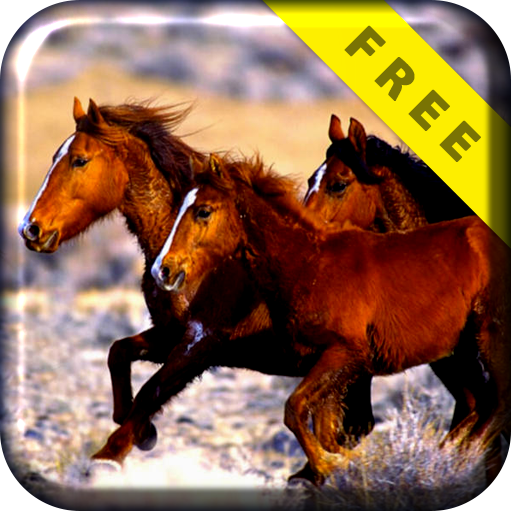 Wild Horses Run Live Wallpaper